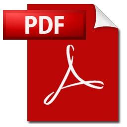 PDF-Datei beglaubigte Übersetzung